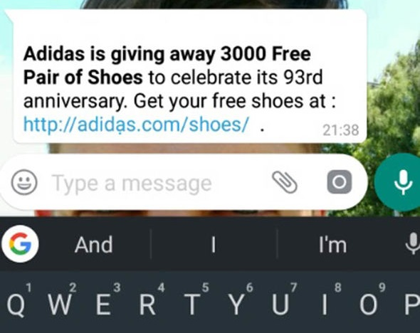 adidas whatsapp scam example